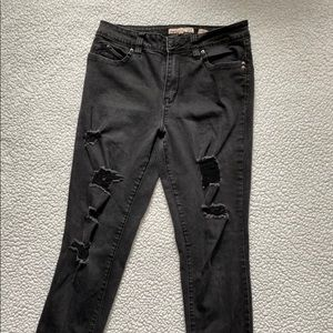 YMI brand black distressed jeans